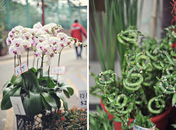 Flower-Market-08.jpg