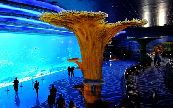 Bên cạnh đó nơi đây cũng bao gồm nhiều địa điểm vui chơi, nghỉ dưỡng cho du khách với các khách sạn, rạp chiếu phim 5D và rạp xiếc.