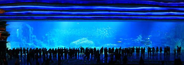 Có bảy khu vực theo chủ đề trong các công viên chủ đề , từng đại diện cho một phần của đại dương, với một lượng nước tổng cộng 48.750.000 lít ( 10.720.000 Anh gal ; 12.870.000 US gal ) muối và nước ngọt , làm cho nó bể cá lớn nhất thế giới .