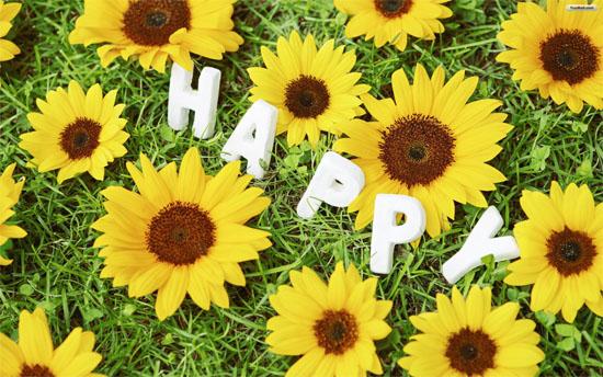happy6-2753-1398763052.jpg