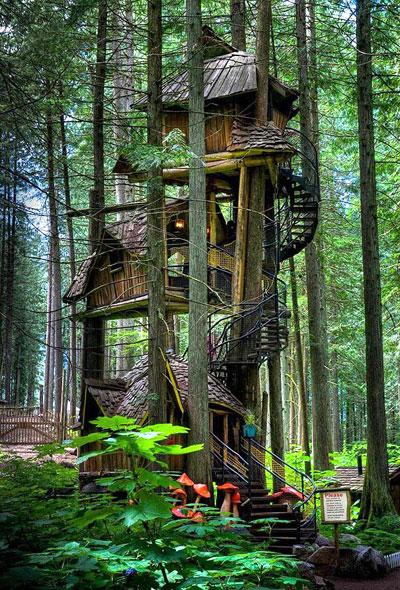 3. Lâu đài trên cây ở  British Columbia, Canada