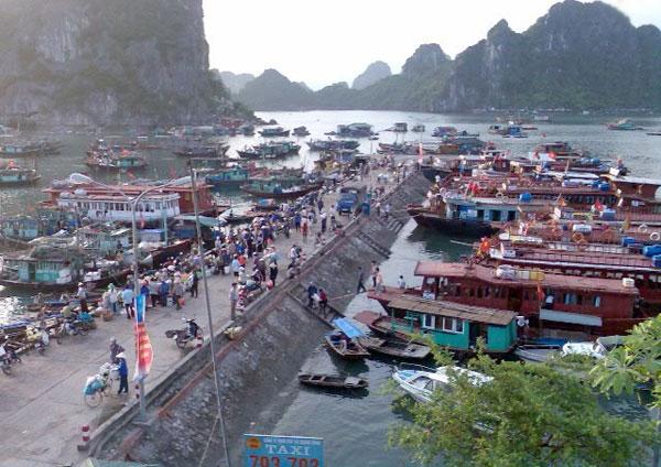 cho thuê xe đi Vân Đồn - Quảng Ninh từ Hà Nội