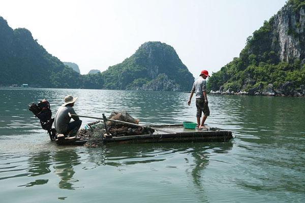 Bạn có thể mua hải sản tươi sống ngay trên những thuyền đánh cá này.