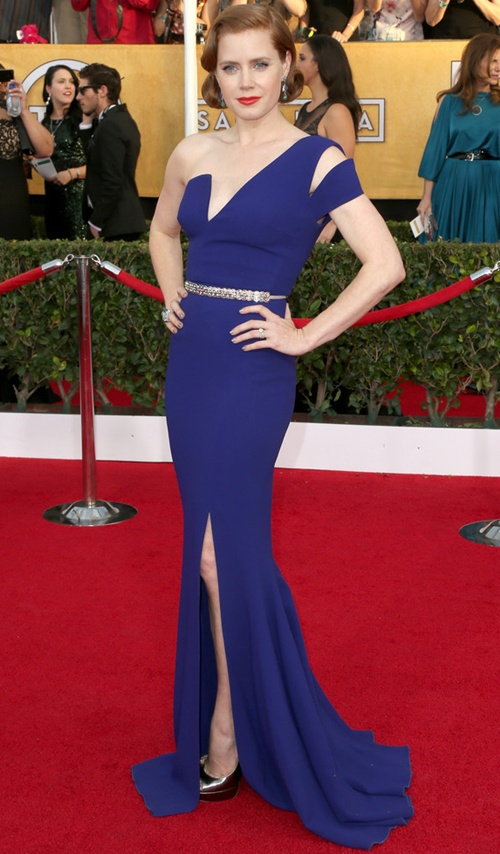 Amy-Adams-Dresses-Skirts-One-S-9241-4531