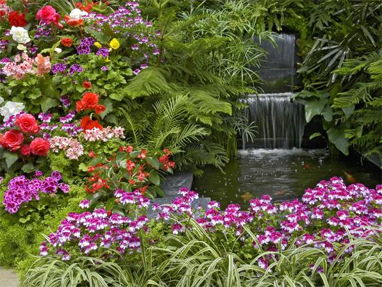 garden1-3651-1401877853.jpg