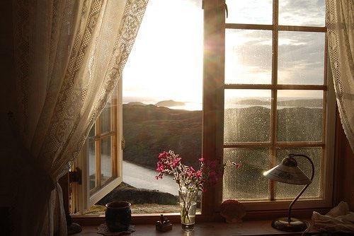 window-4551-1402630031.jpg