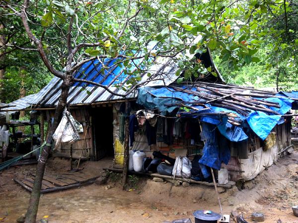 di rung 2 2446 1403266902 Gia đình người rừng ở Bình Thuận
