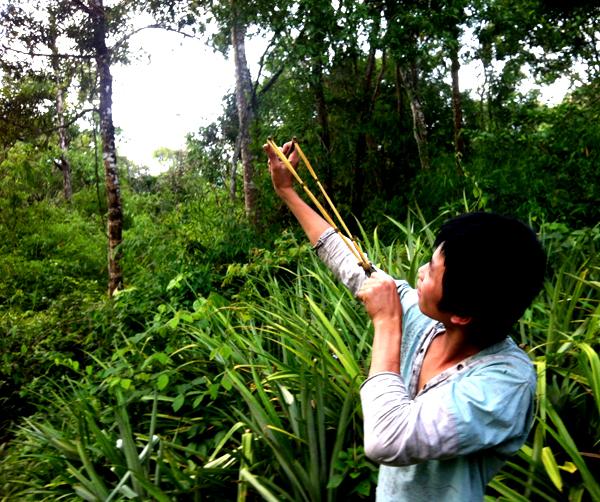 di rung 8 8573 1403266902 Gia đình người rừng ở Bình Thuận
