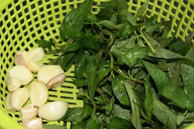 Đậm đà bắp bò hoa rim rau răm