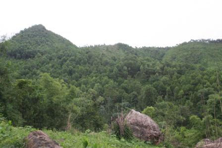 Núi rừng Đá Cóc vẫn còn ám ảnh câu chuyện rùng rợn.