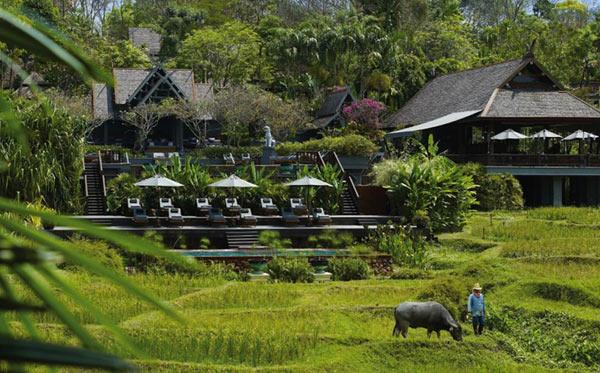 Chiang-Mai-1-9206-1406015625.jpg