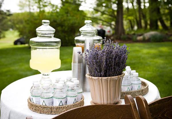 lavender13-1258-1408585731.jpg
