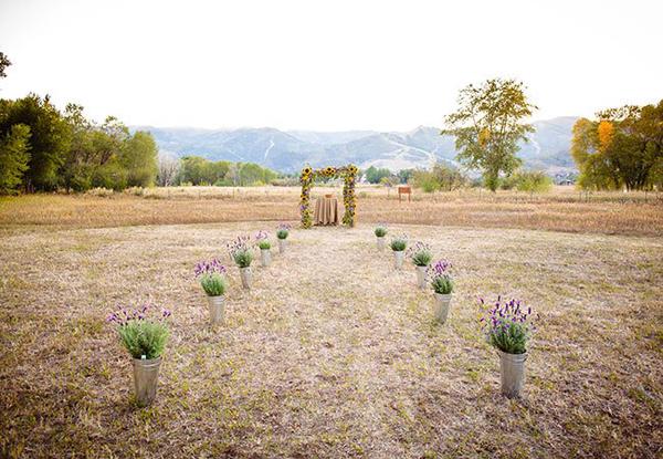 lavender4-6236-1408585731.jpg
