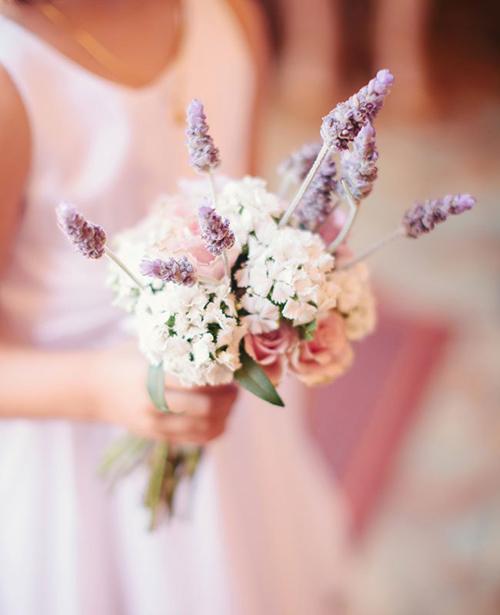 lavender8-9607-1408585731.jpg