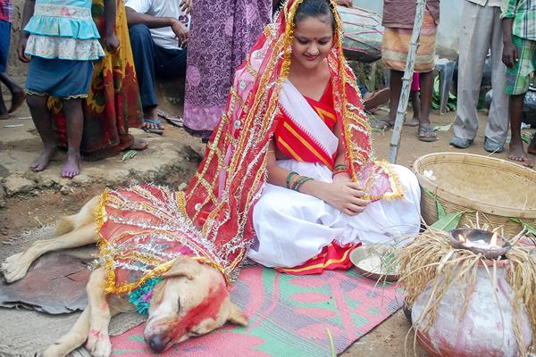 wedding-6629-1409797368.jpg