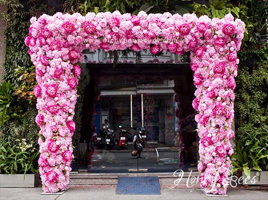 ngoisao-mau-don-trang-hong-1-3296-141161