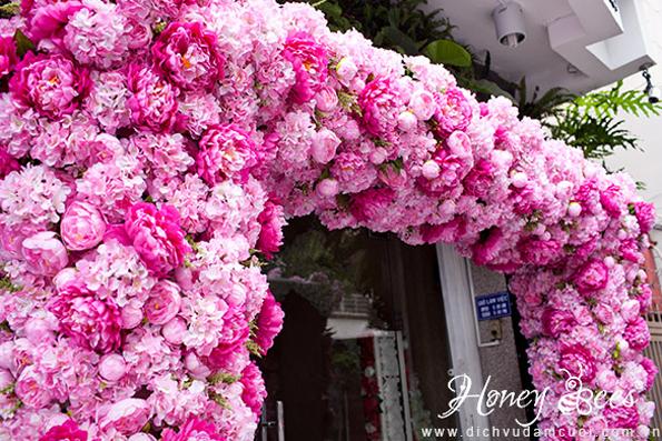 ngoisao-mau-don-trang-hong-2-6356-141161
