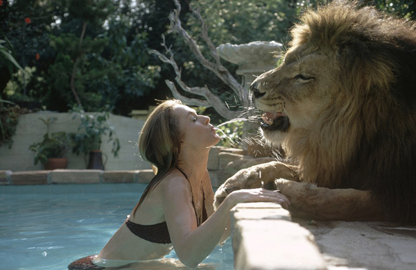 Tipi Hedren, actress and muse for the famed director Alferd Hitchcock, with her pet lion Neil, who the family adopted after taking a trip to Africa