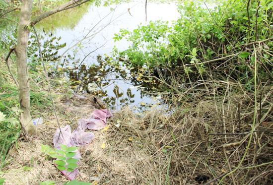 [Caption]Mé nước nơi tìm thấy xác Tấn nằm trong lùm cây um tùm.