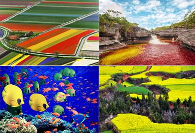 Những vùng đất rực rỡ sắc màu ai cũng muốn đến