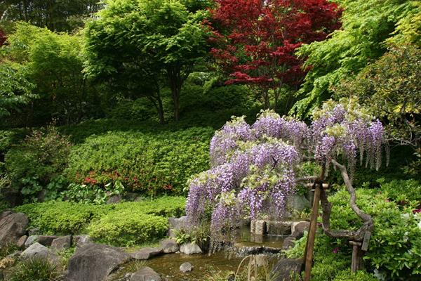nh-4-Hase-dera-7186-1414636926.jpg