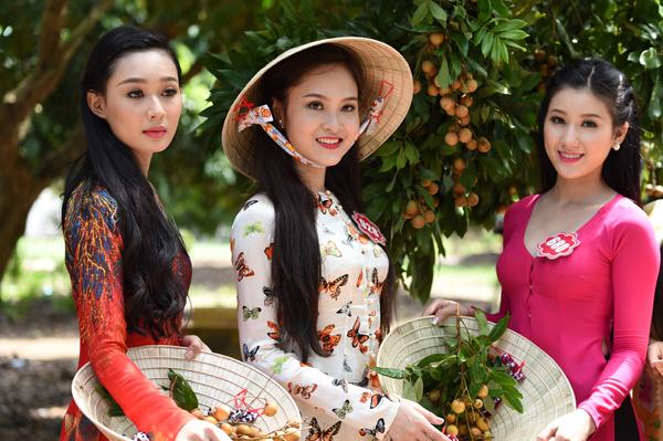 Hoa-hau-viet-nam-2014-5-9236-1415260380.
