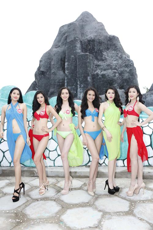 Hoa-hau-Viet-Nam-bikini-1-2737-141541552