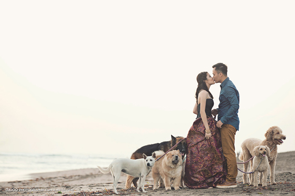 Ảnh cưới đẹp: Sự lãng mạn ngọt ngào