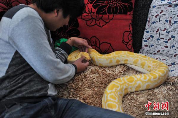 python2-7951-1417685338.jpg