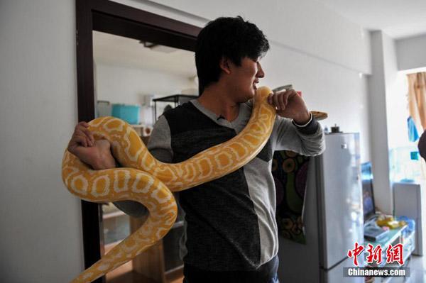 python3-5807-1417685338.jpg