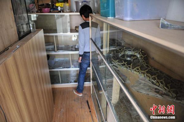 python7-6577-1417685339.jpg