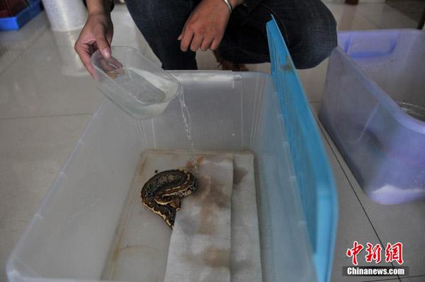 python9-8655-1417685340.jpg