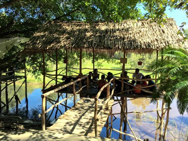 Sau khi tham quan cả khu rừng tràm, du khách có thể dừng chân nghỉ ngơi