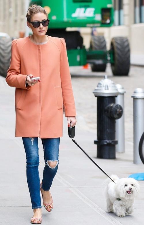 Olivia-Palermo-Walks-Dog-Brook-8053-3119