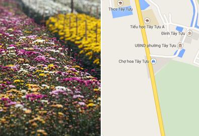 Đường đi đến 5 làng hoa nổi tiếng dịp giáp Tết
