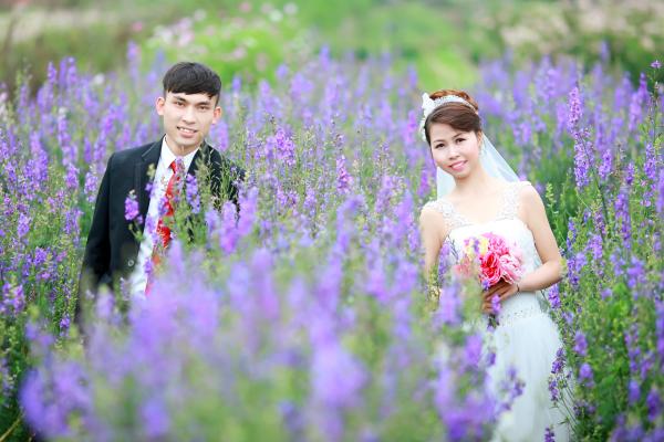 hoa-mua-dong2-8741-1423450836.jpg