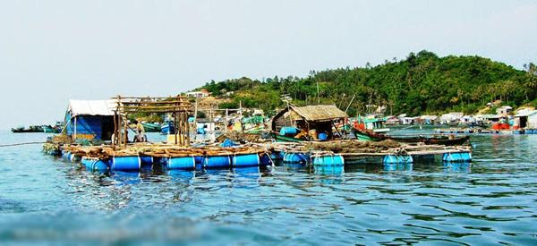 Lồng bè nuôi cá ở Hòn Ngang. Ảnh: nqkhaidl.