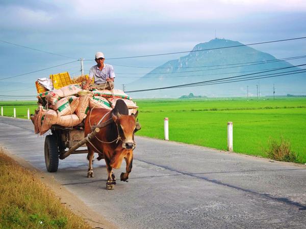Khung cảnh bình yên, hiền hòa của đất và người Phú Yên.