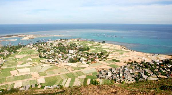 Những mảnh ruộng trồng tỏi ở Lý Sơn nhìn từ trên cao.