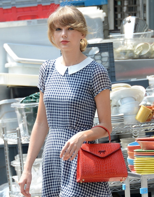 The-Many-Bags-of-Taylor-Swift-2009-4124-