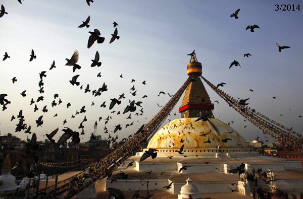 Boudhanath-Stupa-1-7751-1430101628