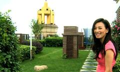 Vườn rau sạch 'giữa trời' của Trương Đình