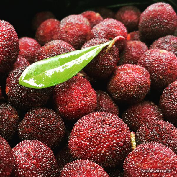 Bốn loại quả được ưa chuộng ngày đầu hè ở Hà Nội
