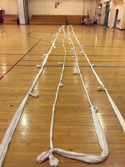 rope-7947-1434769209.jpg
