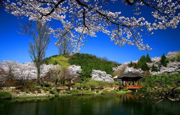 Hàn Quốc gia hạn visa du lịch lên 6 tháng