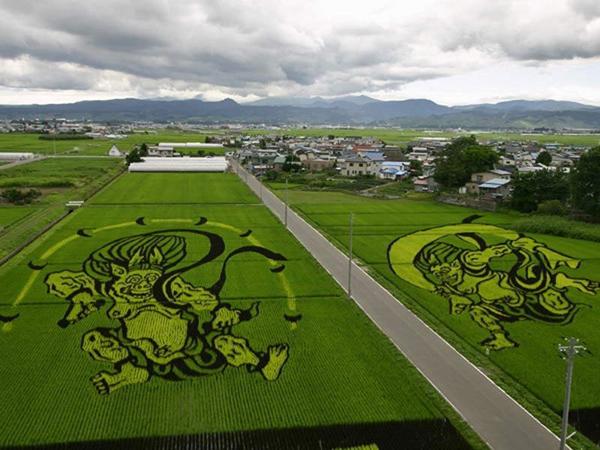 Việc tạo ra nghệ thuật lúa gạo ở Inakadate bắt đầu từ tháng 6 cho đến tháng 9. Bất cứ ai cũng có thể tham gia dự án này, miễn là đăng ký tour trồng gạo. Thời điểm tham quan lý tưởng nhất là vào tháng 9, khi đó lúa đã vào mùa chín, màu sắc rực rỡ, việc ngắm nghía sẽ tuyệt hơn.