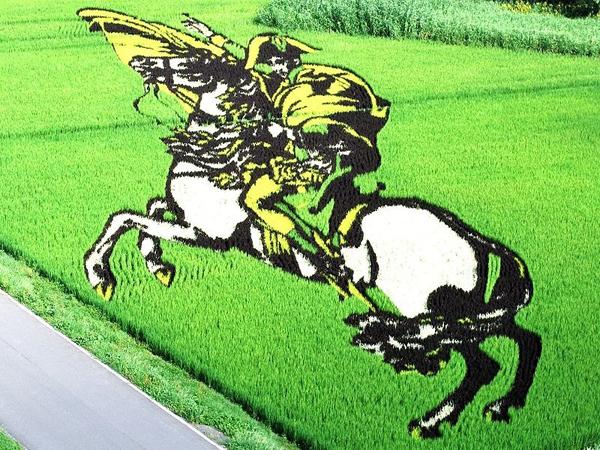 Giữa cánh đồng yên tĩnh, thoang thoảng mùi hương thơm của lúa, khắp các đường làng, lối đi dẫn vào nơi tham quan cánh đồng lúa nghệ thuật là những cánh tay vẫy nhau, tiếng gọi í ới và ca ngợi của du khách.