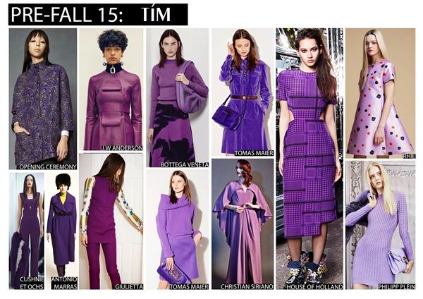 purple-9949-1438341484.jpg