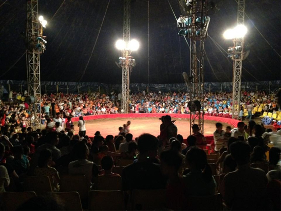 [Caption]Thời điểm sự việc xảy ra, có rất nhiều khán giả đang theo dõi chương trình của Đoàn xiếc Việt Nam trong rạp lưu động.