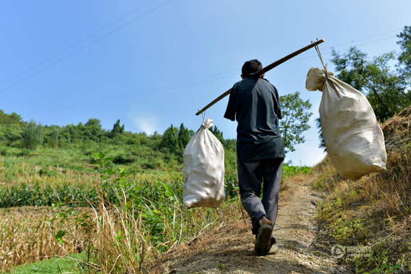 Despite this obstacle, Chen has managed to do his best to fend for himself. He can do most work on his own, including farming, cooking and feeding his family